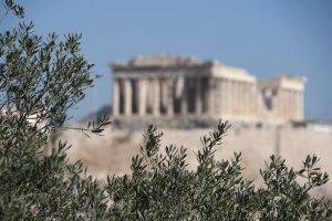acropolis-olivew